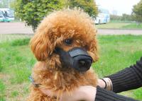 Brand New Dog Muzzles Pet Mask Anti-bite Chew Mesh Soft Nylon Black/Red S/M/L Dog Cat Safety Mask Drop/Free Shipping