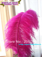 "wholesale 100pcs/lot 14-16"" Fuschia Ostrich Feather Plume FREE SHIPPING"