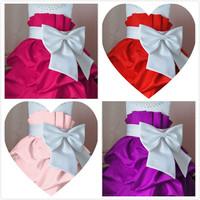 Retail 1Pcs  2013 children dress girls Princess dress chiffon Big bowknot dresse for summer  D104