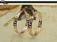 Free Shipping 18k Rose Gold Hoop Earrings 2013 Fashion Bohemia Vintage Cutout Earrings For Women E1