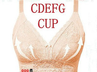 Extra Gift for You Free Shipping C D E F G Cup High Quality  Wire Free Big Bra Women's Lingerie Bra Lanny Women Bra Push Up Bra