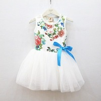 Free shipping 2014 summer models of child girl tutu sweet floral Puff vest dress skirt / wholesale / 3 / lot