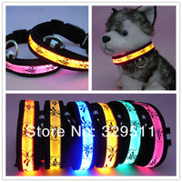 Low Price Fast Speed DHL &FEDEX  Pet Light Up LED Dog Collar Nylon Glow  LED Dog Collar electronic Collar With black-rimmed
