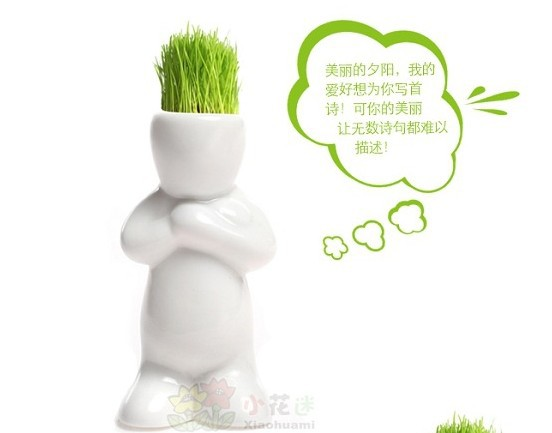hot sale !Generation small grass doll lover diy mini plant bonsai plants bonsai,Plant Hair man Plant,sent seed as gift