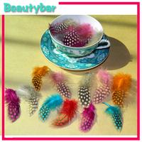 Nail Art Acrylic UV Gel nail art feather  Decoration Design DIY Nail Art