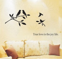 (Various Colors) True Love Birds Decor Mural Art Wall Sticker Decal WY1133