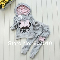 2014  New 1set Retail baby girls sport suit Fashion two-piece Baby Garment Butterfly clothing set, 3colors