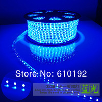 DHL Free shipping 220v  SMD3528 flexible copper wire led light strip 10M 60led/m 4.8w/m waterproof  white/cold red RGB with plug