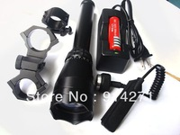 2014 New Wholesale 2PCS Free shipping Biggest  100MW ND50 green laser sight with 18650 Recharger battery & charger