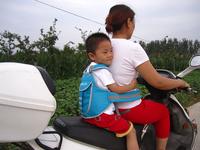 Children motorcycle seat belt /Electric car seat belts /Baby dining chair seat belts /bicycle seat belts