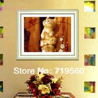 60*47cm,1 pcs+3D Free shipping dmc DIY unfinished cross stitch completed kit,cotton cross-stitch SET---- three cats CS2018