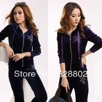 High quality Jogging suits for women  2013 Pleuche sport suit Long sleeve hooded han edition fashion leisure suit