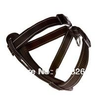 Free Shipping Black Adjustable Nylon Night Reflective Safety Seat Belt Dog Walking Harness Size S M L XL