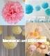 "10pcs 12""  30CM Tissue Paper Pom Poms Flower Balls Wedding Party Shower Decoration Mix colors uPick  Free shipping"