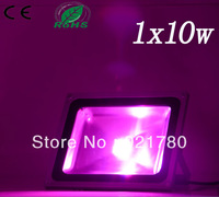Dropshiping high quality  violet led floodlight 10w IP65 CE&Rohs approved free shipping led landscape lamp and lighting