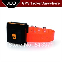 Latest Small Portable Dog GPS Tracking Device Anywhere tk108