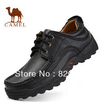 2013  new arrival  authentic camel casual mans leather shoes DF-5075