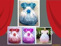 2013 HOT Selling Children Clothing Girls Blue Princess Dresses Flower Design Princess Dresses