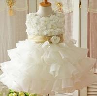 Retail ! 2014 New free shipping girls clothing beautiful Princess dress girls sleeveless lace dress birthday dresses,girls dress