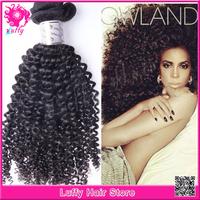 Unprocessed Brazilian Kinky Curly Virgin Hair 10''-28'' Inch TOP Quality 5A Grade 100% Human Hair Weaves Kinky Hair Extensions