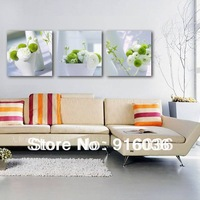 Quality Free shipping 3 piece Canvas Art Home Furnishing Decoration, Modern Picture Print Wall Hanging Flower Painting pt627