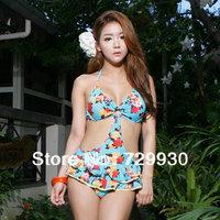 Free Shipping 2013 Retro High Waisted Swimwear Women One Piece Small Push Up Beach Swimwear Spa