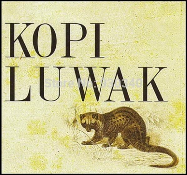 100 Kopi Luwak coffee beans of sample 10g