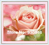 Diamond painting flower diy cross stitch series diamond pink living room decoration