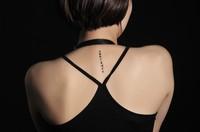 10 different kinds Free shipping Temporary tattoo body art Sanskrit Six words tattoo Waterproof tattoo sticker  man Women tattoo
