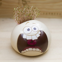 Mini Grass dolls expressions potted plant seeds/bonsai herb seeds free shipping