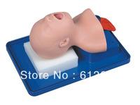 neonatal endotracheal intubation model for teaching