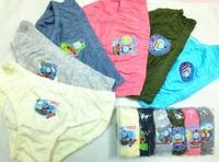 Free shipping~6pcs/lot famous cartoon character Underewears,Kids Underwear,girl and boy's underwear,baby inner wears
