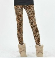 2013 New Arrival Women's Fashion Spring&Summer trend leopard printed plus velvet Leggings,Free Shipping