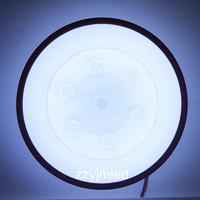 24W LED Ceilling Lamp Modern Design White Light 300/350mm