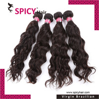 Free shipping Spicy hair product 4pcs lot unprocessed virgin brazilian water wave curly hair