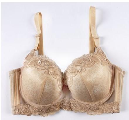 Sexy vintage floral lace brand plus size bra 34c 34d 36c 36d 38c 38d 40c 40d 42c 42d push up bra women brassiere bras underwear(China (Mainland))
