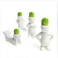 Free shipping Diy mini flowers and green grass head doll double mini plants bonsai