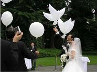 Free shipping wedding white biodegradable dove balloon flying balloons