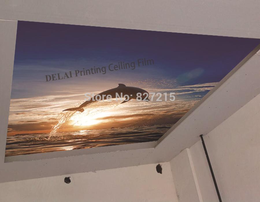 Потолочная плитка DELAI D/1013 Print Stretched Ceiling Films D-1013 Print Stretched Ceiling Films  потолочная плитка delai t 0161 print stretched ceiling films t 0161 print stretched ceiling films