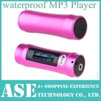 1PC Metal case New 512MB 2GB 4GB 8GB 16GB LCD Swimming Waterproof MP3 Player with HD screen FM Radio Retail Box free shipping