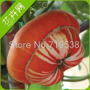 Карликовое дерево Froude shouson 4 карликовое дерево china seeds dionaea muscipula