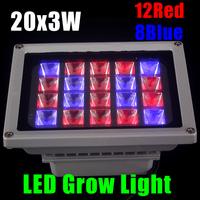 led grow light  85-265V 20x3w 10W 20W 30W 60W Landscape Lighting IP65 LED Flood Light Floodlight LED street Lamp Free Shipping