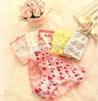Free shipping!10pcs /lot baby Girls cartoon designs underwears Kids panties