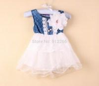 2014 summer  girl's denim TUTU dresses lace flower kid's sleeve wear children's clothing pink baby garment,14FEB17-LQ-1