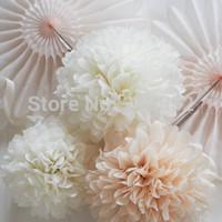 Free Shipping 10pcs mixed (10CM,15CM) Tissue Paper Pom Poms Wedding/Party/Birthday/Baby shower/Nursery  decoration