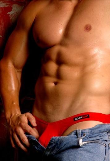 Men's underwear man sexy briefs Cotton Breathable knickers(China (Mainland))