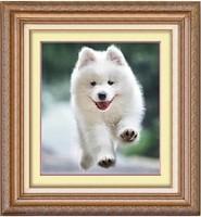 Free Shipping handmade diy diamond painting diamond cross stitch needlework free dog  pasted painting square drill full resin