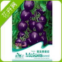 1 Packs 20 seeds Purple Tomato seeds