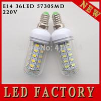 1X 36 SMD 5730 E14 led corn bulb lamp,Warm white /white led lighting led corn lighting free shipping