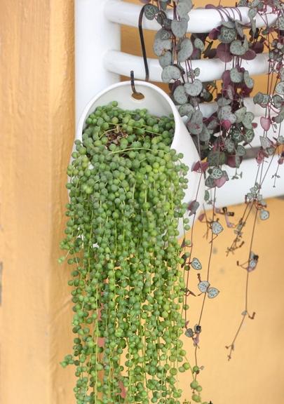 Ceramic Wall Pots Pots Planters Ceramic